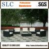Patio Furniture/ Rattan Outdoor Sofa/ Wicker Outdoor Sofa (SC-B6018-F)