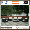 Patio Furniture/ Rattan Outdoor Sofa/ Wicker Outdoor Sofa (SC-B6018-F)
