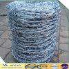 Hot Dipped Galvanized Barbed Wire for Peru (XA-BW1)