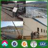 Algeria Light Steel Structure Slaughter Workshop (XGZ-SSB102)