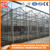 Agriculture Single-Span PC Sheet Greenhouse with Cooling Sysytem