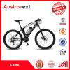Electric MTB Electric Bike Ebike