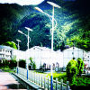 LED Solar Street Light with Good Designand CE (YZY-LL-001H)