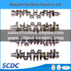 Hot Sale Cummins Crankshaft for Qsk19 Engine