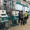 30 T/24h Maize Milling Plant / Flour Milling Machines for Kenya