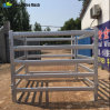 China Supply Galvanized Cheap Cattle Panel