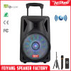 12 Inch New Arrivals Portable Rechargeable Big Power Portable Bluetooth Speaker with Trolley---F12-06