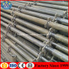 Quicklock Scaffolding System Used in Concrete Construction Work