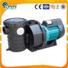 Swimming Pool Circulation Water Pump