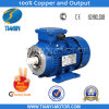 Perfect Performance 3 Phase Squirrel Cage Induction Motor