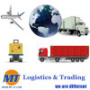 International Transportation Logistics Sea Freight Air Freight Forwarder Trucking Container Loading Hauling Service for Ocean Shipping Air Shipping Cargo