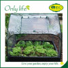 Onlylife Square Foldable Collapsible Grow Tunnel Mini Greenhouse