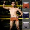 China Fashion Comfortable Men Brief Shorts Boxer Men′s Underwear
