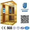 AC Vvvf Gearless Drive Passenger Elevator Without Machine Room (RLS-252)