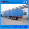Best-Selling 2/3 Axles Box Transport Semi Trailer