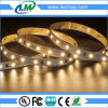 IP20 Indoor Light 12W/M SMD2835 LED Strip Light