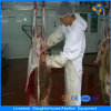 Halal Traditional Sheep Slaughtering Equipment for Abattoir House