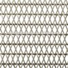 304 /316/Conveyer Belt Mesh for Convery Food Industrial