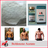 Raw Purity Steroid Powder Boldenone Acetate for Muscle Growth