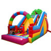 Rainbow PVC Inflatable Bouncer Climbing Slide, Made in China Giant Inflatable Slider for Sale