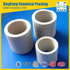 Chemical Filling Ceramic Raschig Ring Tower Packing