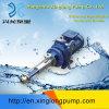 Xinglong Micro Metering Single Screw Pump
