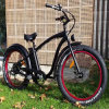 Cheap 48V Fat Tire Electric Bike