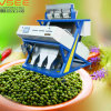 CCD Color Sorter for Green Beans