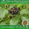100% Natural Siberian Ginseng Extract (Eleutheroside (b+e) 0.8%)