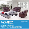 Recliner Sofa, House Furniture Leather Sofa, Modern Sofa Set (R81)