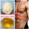 99% Purity Male Hormone Powder Androsterone CAS: 53-41-8