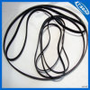 Automotive Pk Belt, Fan Belt, Ribbed Belts for Autos