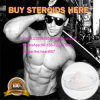 Bodybuilding Use Steroids Testosterones Base CAS No.: 58-22-0