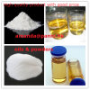 Raw 98% Steroid Powder Testosterone Enanthate 300mg/Ml Injection for Muscle Gain