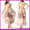2014 New Fashion Delicate Silk Floral Printing Dress (DFG10)