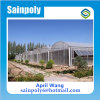 Wholesale Steel and PC-Sheet Multi-Span Greenhouse for Sale