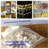 Hot Bodybuilding Steroid Powder Test Prop/Testosterone Propionate Powder
