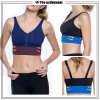 OEM Wholesale Women Seamless Racerback Sports Bra