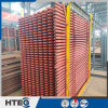 Carbon Steel Radiant Superheaters for Thermal Power Plant