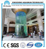 Large Cylindrical Glass Fish Tank Used with Transparent Acrylic Sheet