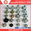 a Variety of Stainless Steelss and Carbon Steel T-Nuts