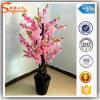 Mini Indoor Artificial Silk Cherry Blossom Tree