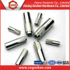Zinc Plated Drop in Expansion Anchor Bolts
