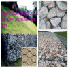 PVC Coated Hexagonal Wire Gabion Box