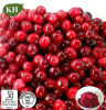 100% Natural Cranberry Extract: 5% ~ 35% Anthocyanins 25% ~ 50% Proanthocyanidins (OPC)