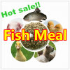 Anchovy Fish Meal for Feed (protein 65% 72%)