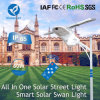Bluesmart Integrated /All in One Solar Street Light with Panel