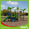 Wisdom Series Children Indoor and Outdoor Playground Equipment