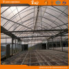 Durable F-Clean Multi-Span Film Greenhouse with Glass Wall