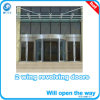 2-Wing Automatic Revolving Door with Sliding Door in Center